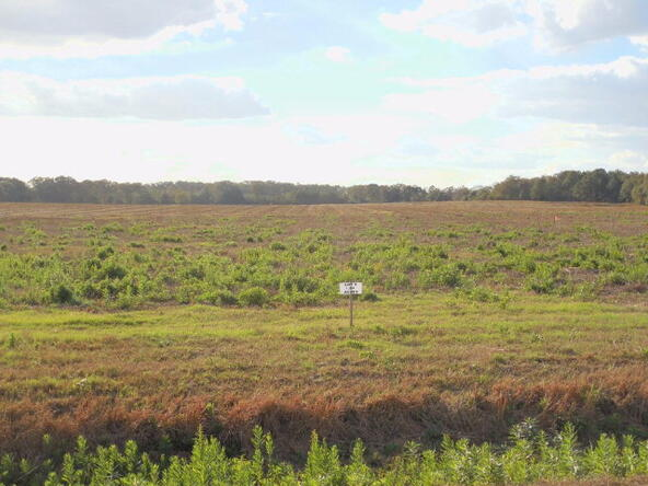 1.84 Ac Christmas Rd. Lot 9, Ashford, AL 36312 Photo 2