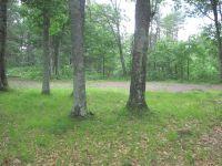 Home for sale: Lot 6 Pleasant Acres, Danbury, WI 54830