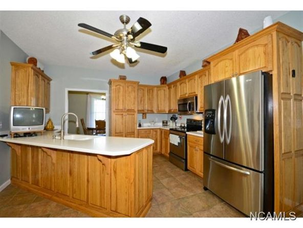 132 Co Rd. 202, Crane Hill, AL 35053 Photo 2