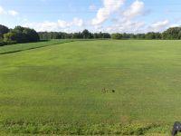 Home for sale: 5 Woodland Dr., Decherd, TN 37324