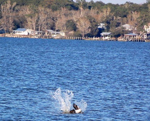 12050 Mary Ann Beach Rd., Fairhope, AL 36532 Photo 2