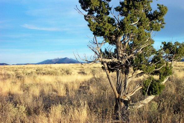 6218 S. Prairie Grass Ln., Williams, AZ 86046 Photo 14