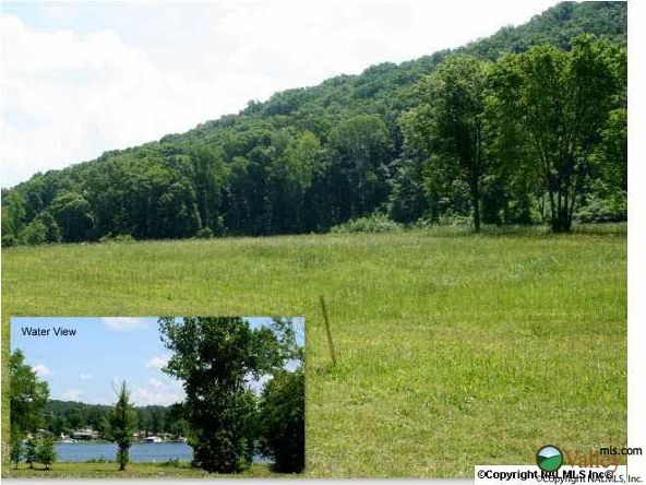 115 Lake Creek Dr., Guntersville, AL 35976 Photo 21