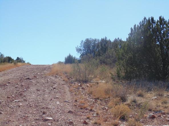 57174 N. Bridge Canyon Parkway, Seligman, AZ 86337 Photo 7