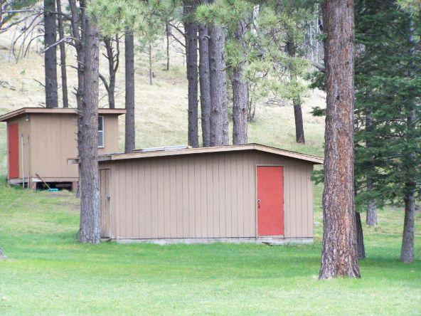 1 County Rd. 2153, Alpine, AZ 85920 Photo 58