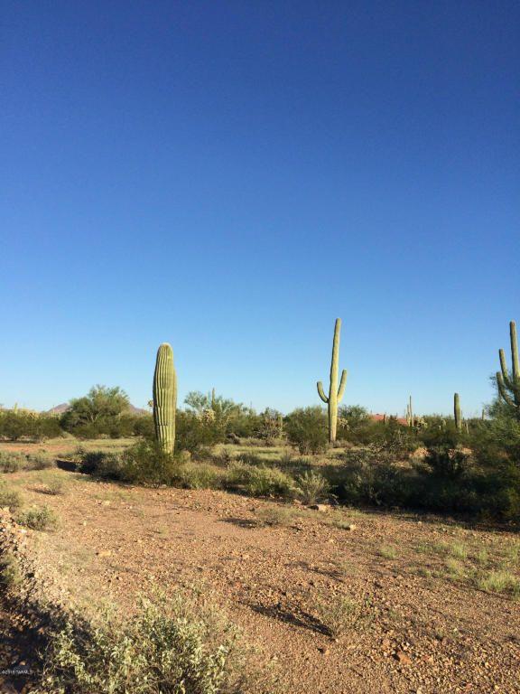 11715 Tortoise Trail, Tucson, AZ 85743 Photo 1