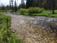 Home for sale: Tbd Valley Creek Rd., Stanley, ID 83278