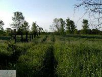 Home for sale: 0 Battle Creek Rd., Bellevue, MI 49021