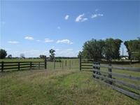 Home for sale: 688 Cr 489, Lake Panasoffkee, FL 33538