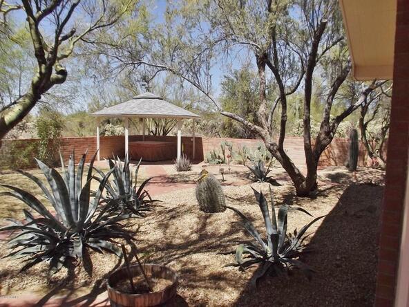 10151 N. Orange Ranch, Tucson, AZ 85742 Photo 65