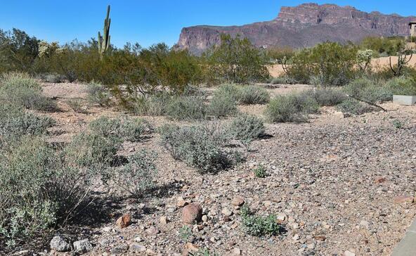3636 S. Quail Crest St., Gold Canyon, AZ 85118 Photo 2