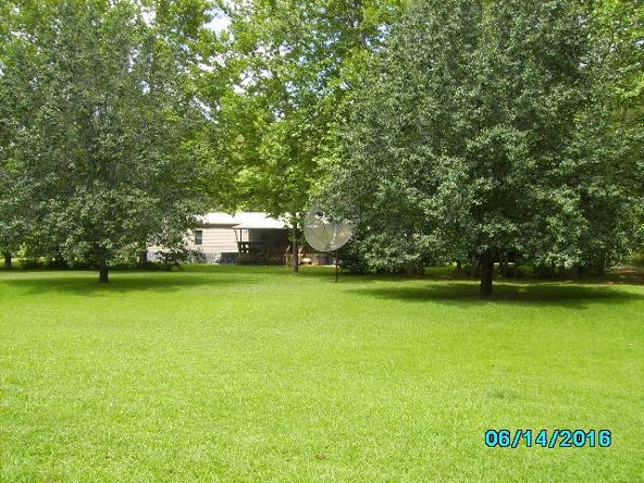2426 County Rd. 432, Woodland, AL 36280 Photo 20