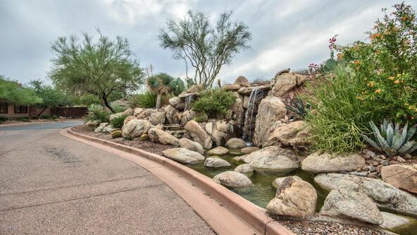 9015 N. Lava Bluff Trail, Fountain Hills, AZ 85268 Photo 20