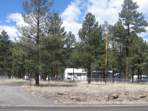 38730 Hwy. 373, Greer, AZ 85927 Photo 7