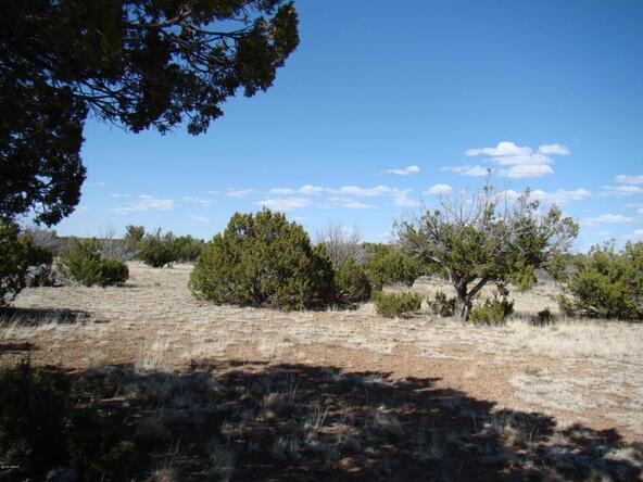 2319 Sitgreaves St., White Mountain Lake, AZ 85912 Photo 13
