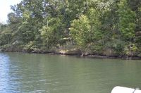 Home for sale: Lot 18 Cane Creek Dr., Semora, NC 27343
