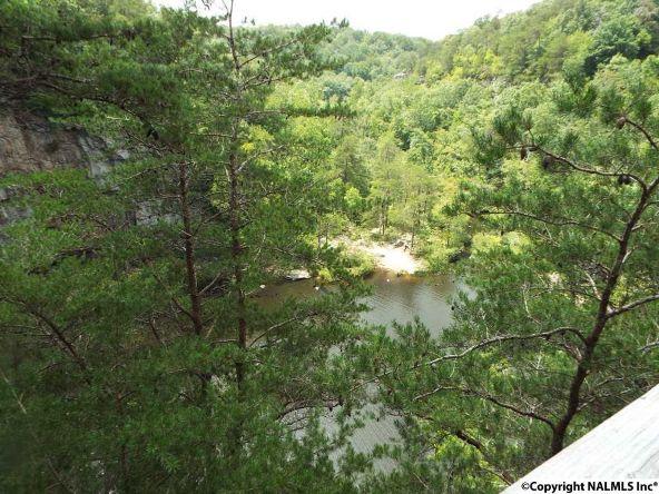 984 County Rd. 613, Mentone, AL 35984 Photo 17