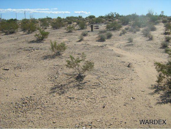 16235 S. Shep Ln. S, Yucca, AZ 86438 Photo 1