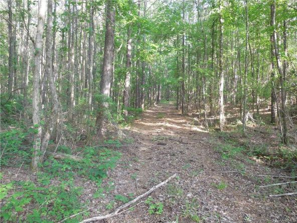 17462 Central Plank Rd., Eclectic, AL 36024 Photo 5