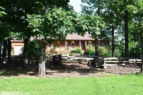 561 Cooper Point Dr., Mountain View, AR 72560 Photo 19