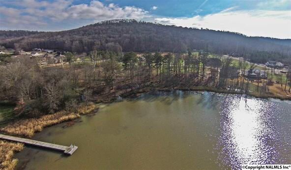 4 Lake Creek Dr., Guntersville, AL 35976 Photo 2