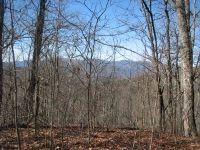 Home for sale: 1 Hurrah Ridge Rd., Scaly Mountain, NC 28775