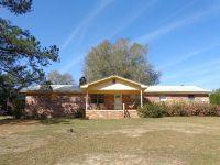 Home for sale: 5005 Flynt Dr., Marianna, FL 32446