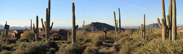 41927 N. Saguaro Forest Dr., Scottsdale, AZ 85262 Photo 19