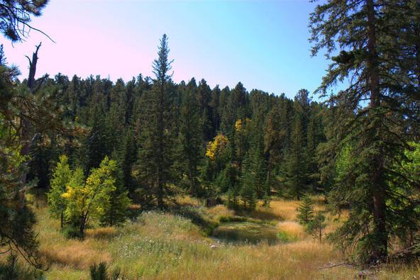 Lot 5, Powder House Trail, Lead, SD 57754 Photo 5