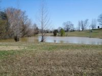 Home for sale: 26 Creekside Dr., Paris, TN 38242