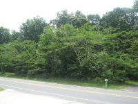 Home for sale: Lot 12 Chincoteague Rd., Wallops Island, VA 23337