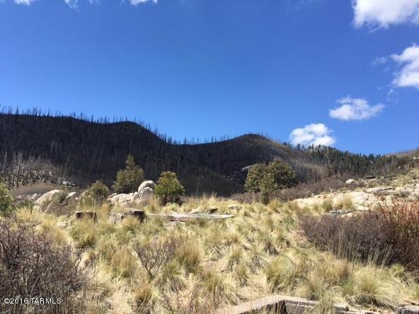 11179 E. Upper Goat Hill, Mount Lemmon, AZ 85619 Photo 8