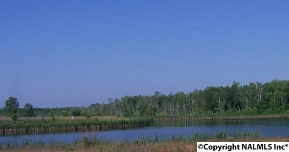 139 Misty River Ln., Huntsville, AL 35824 Photo 7