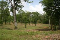 Home for sale: Hwy. 191 North Of Zwolle, Noble, LA 71462