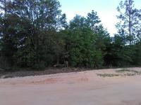 Home for sale: 0000 Terzino Ln., Chipley, FL 32428