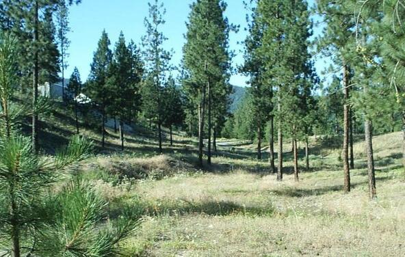 1269 Ruffed Grouse Way, Kettle Falls, WA 99141 Photo 19
