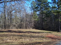 Home for sale: Lot 1 Pine Grove Church Rd., Culloden, GA 31016