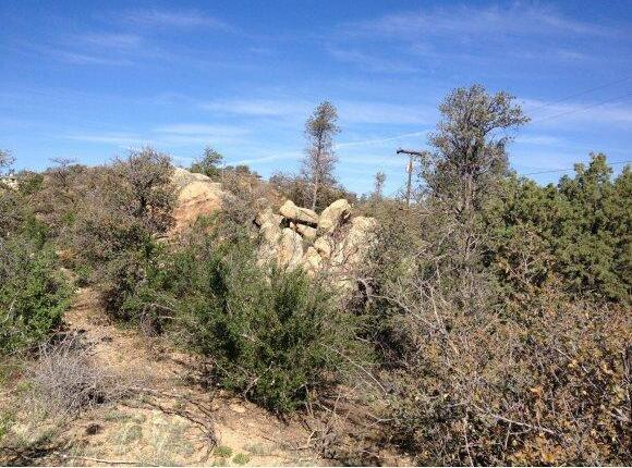 2216 Santa Fe Spgs, Prescott, AZ 86305 Photo 5