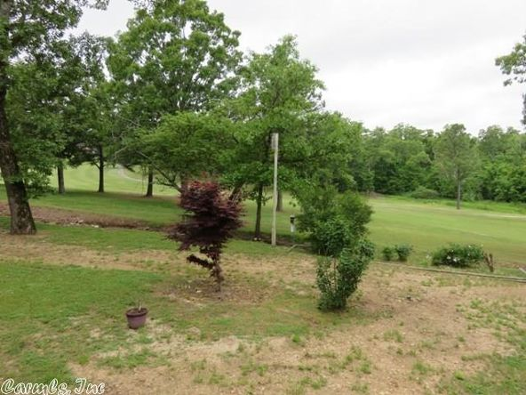 601 S. Sequoia Dr., Horseshoe Bend, AR 72512 Photo 17