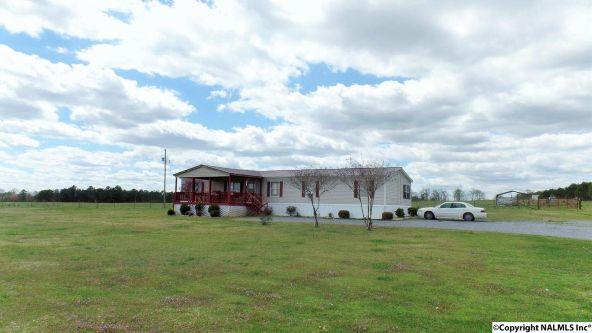547 County Rd. 550, Grove Oak, AL 35975 Photo 11