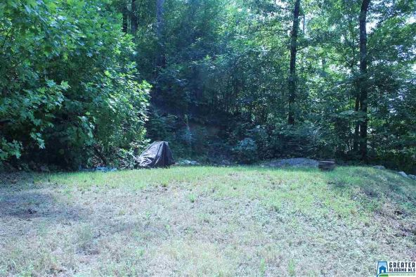 1584 Davis Acres Dr., Alpine, AL 35014 Photo 6