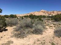 Home for sale: 73 Banana Ln., Santa Fe, NM 87506