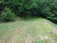 Home for sale: Hog Branch, Burnsville, NC 28714