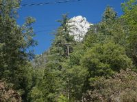 Home for sale: Hillsdale St., Idyllwild, CA 92549