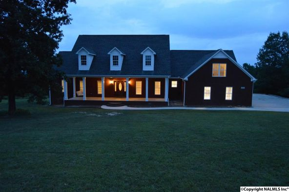 315 Peck Mountain Rd., Eva, AL 35621 Photo 1