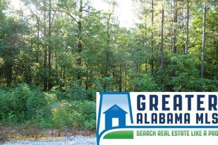 6 Rock Creek Co Rd. 4312, Wedowee, AL 36278 Photo 9