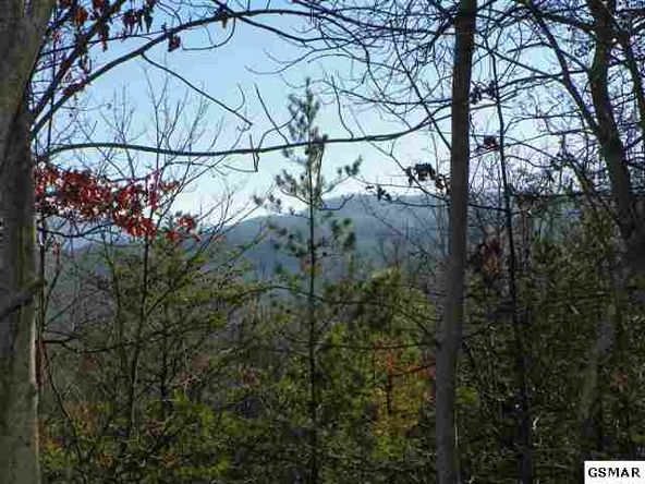 Lot 9 Enclave Park Way, Gatlinburg, TN 37738 Photo 8