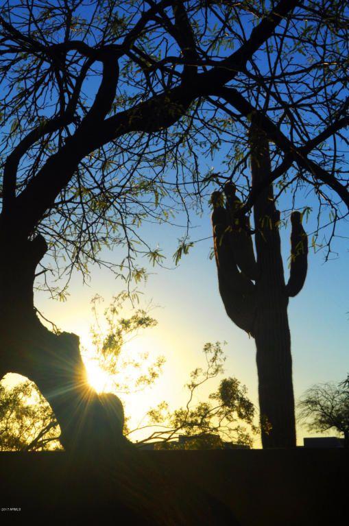23434 N. 78th St., Scottsdale, AZ 85255 Photo 12