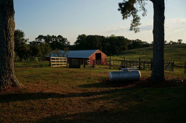 6491 County Rd. 49, Ranburne, AL 36273 Photo 29