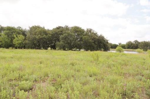 Fm 218, Pottsville, TX 76565 Photo 10